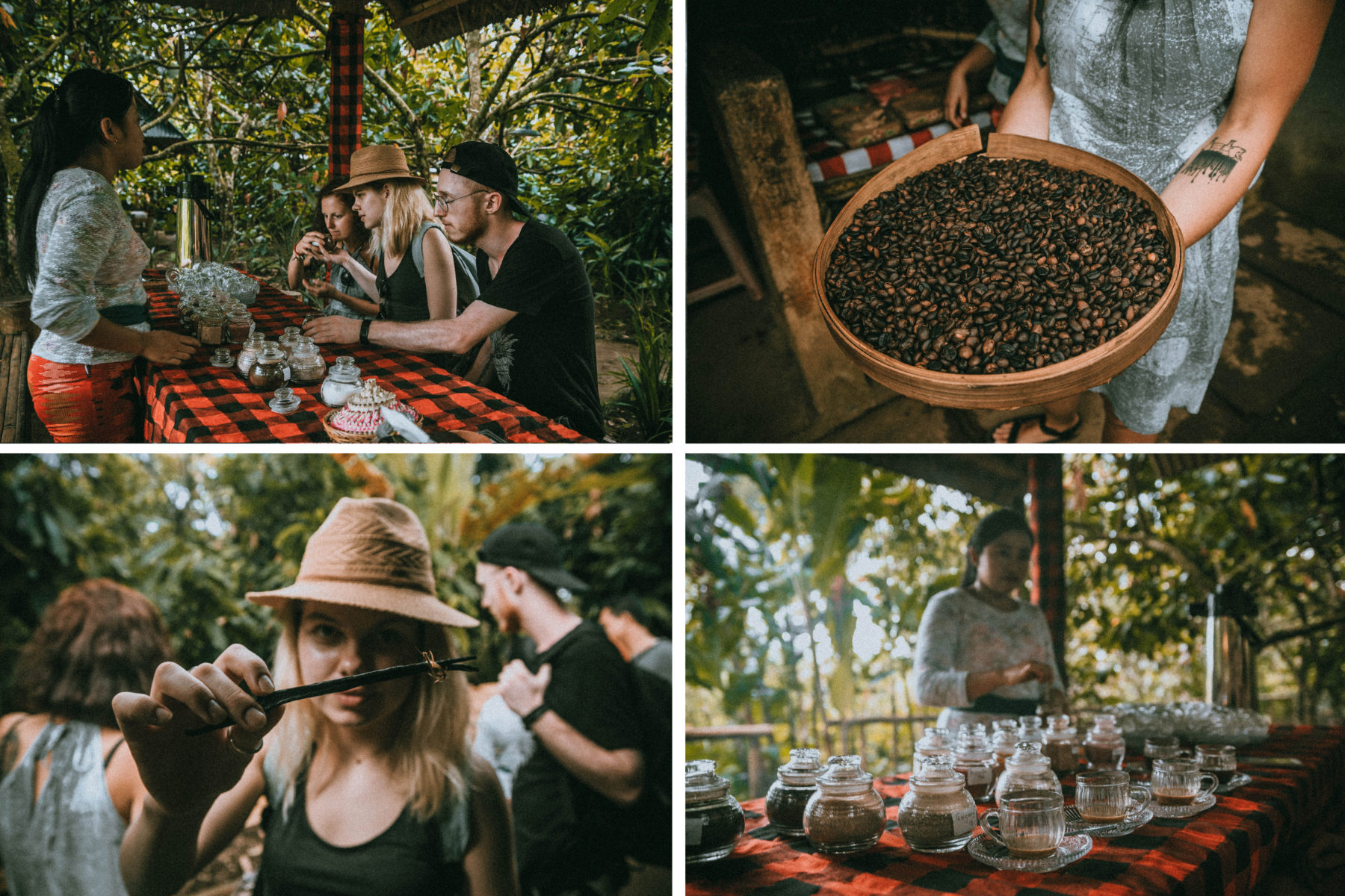 bali indonesia luwak coffee tasting authentic experience