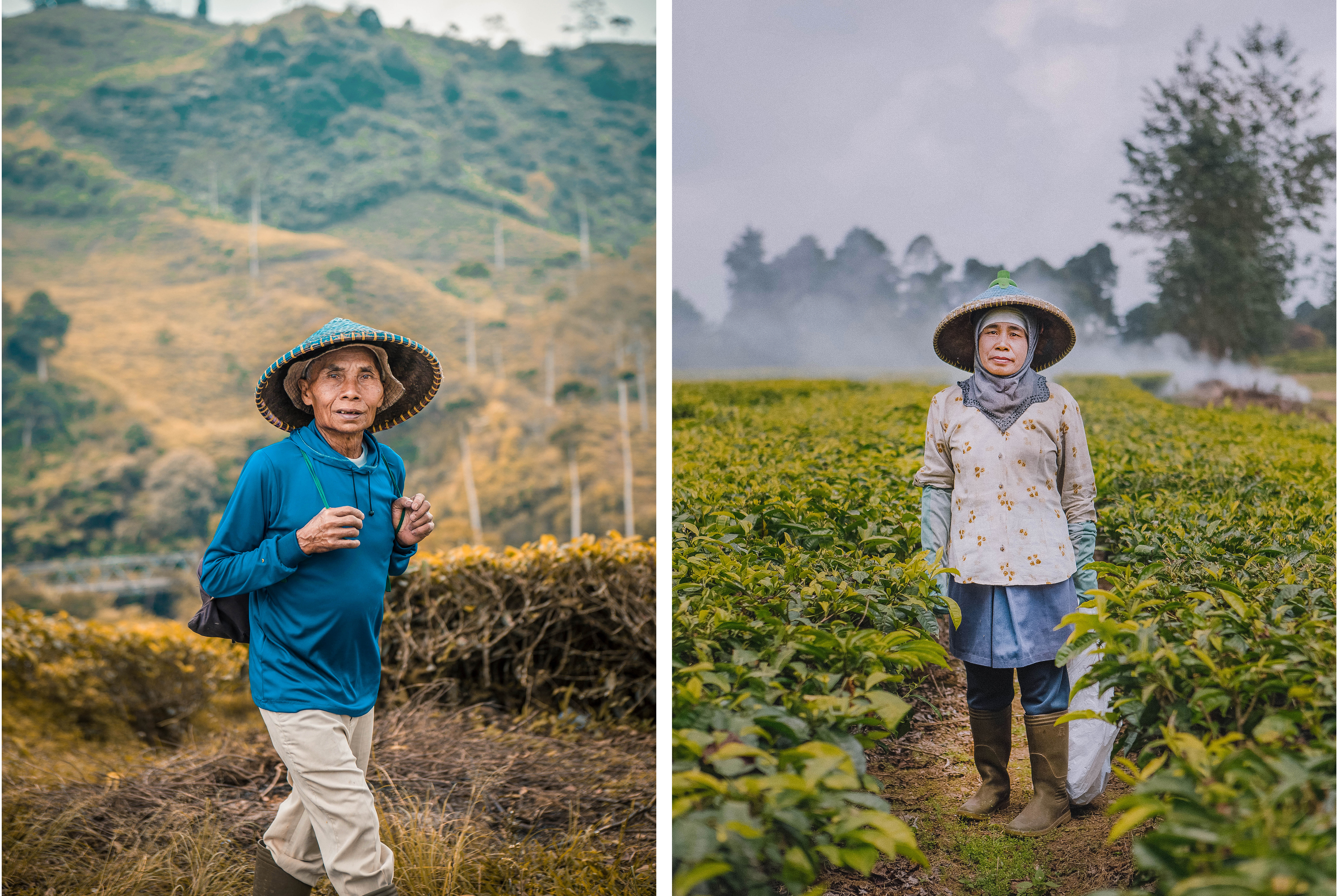 javanese local people working in the fields and tea plantations strangers capturing moment portrait